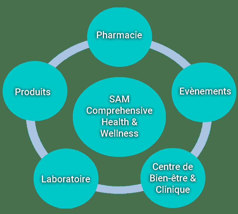 schema services